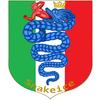 Snakeice