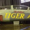 BryNX_Oldest_Tiger