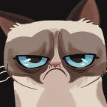 -=Grumpy=-