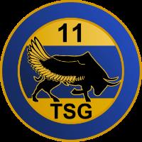 11TSG