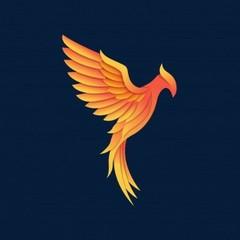 Phoenix195