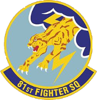 v81st Fighter Squadron