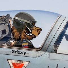 GrizzlyVzla