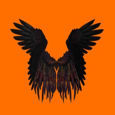 cuervo111